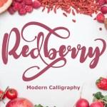 Redberry Modern Calligraphy Script Font