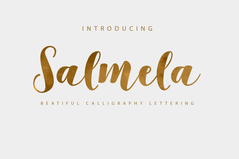 Salmela Script Calligraphy Font-1