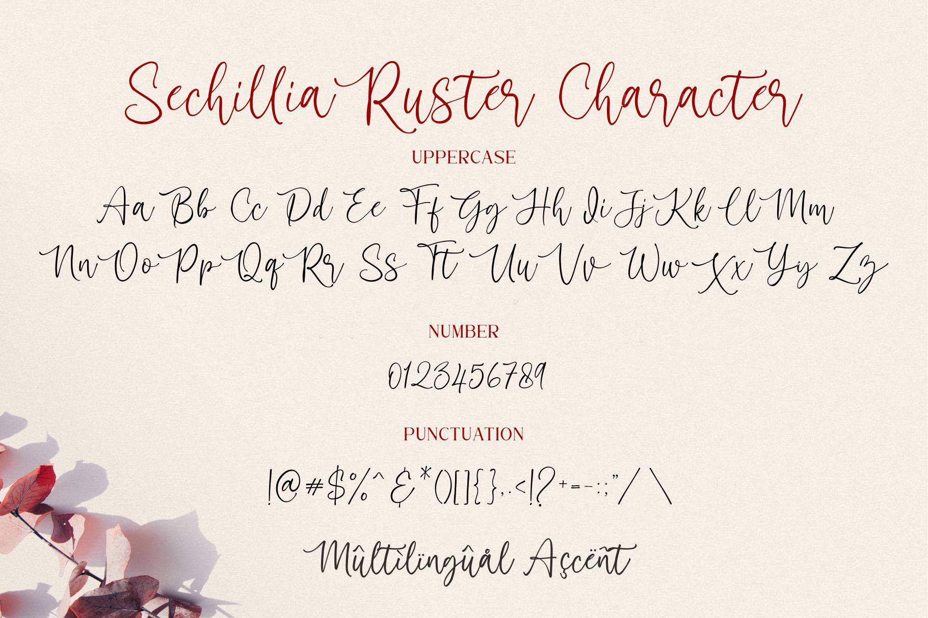 Sechillia Ruster Handwritten Script Font-3