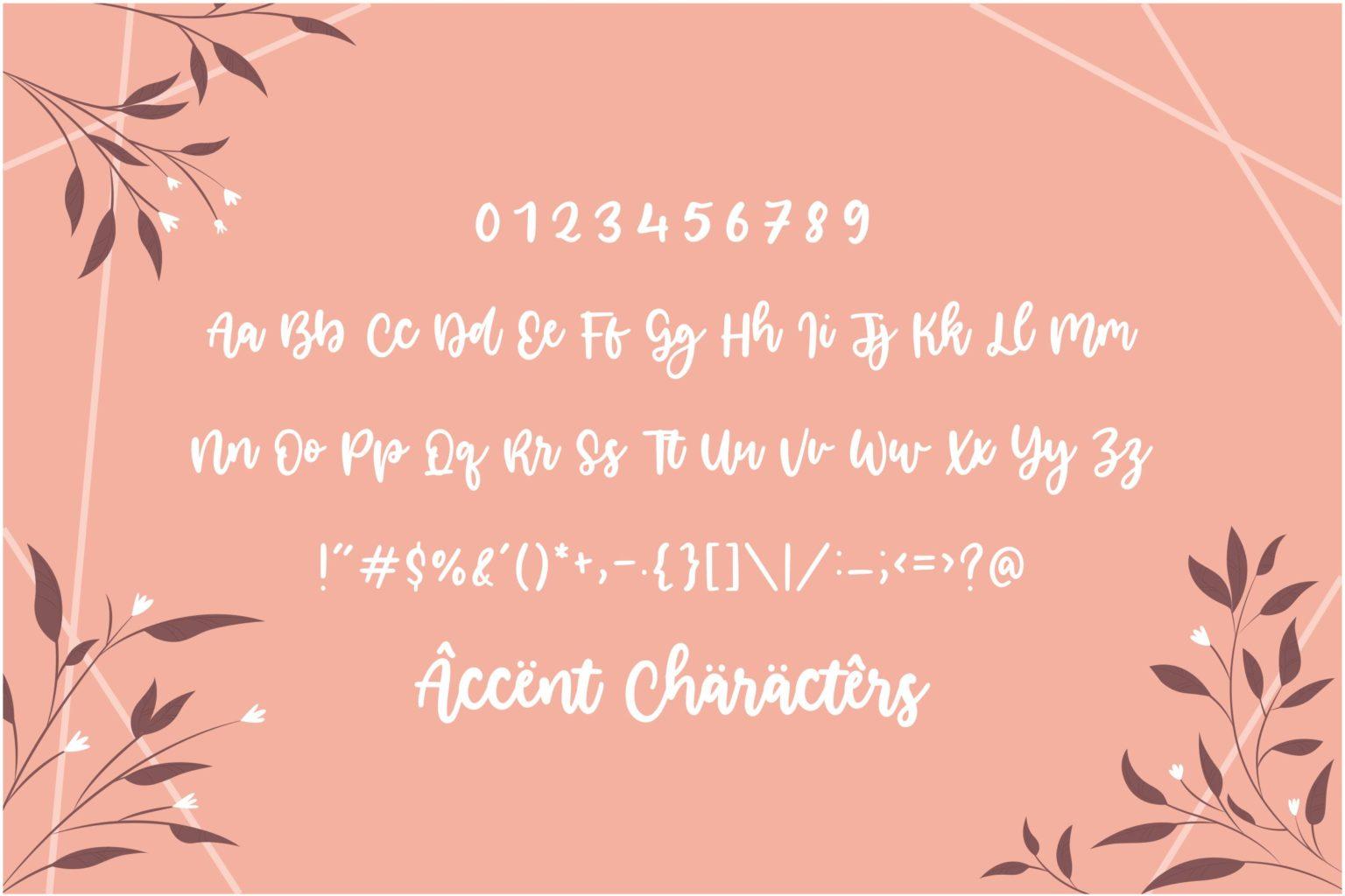 Smilestar Modern Handwritten Font-3