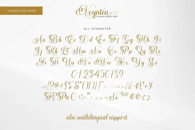 Voyntea Elegant Calligraphy Script Font-3