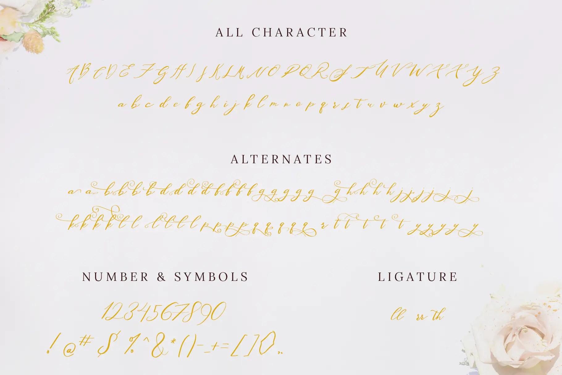 Washington Beautiful Calligraphy Script Font-3
