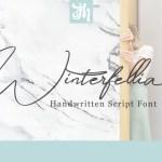 Winterfellia Handwritten Script Font