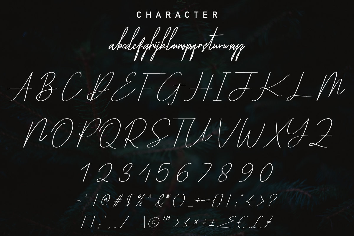 Yestermoon Calligraphy Script Font-3
