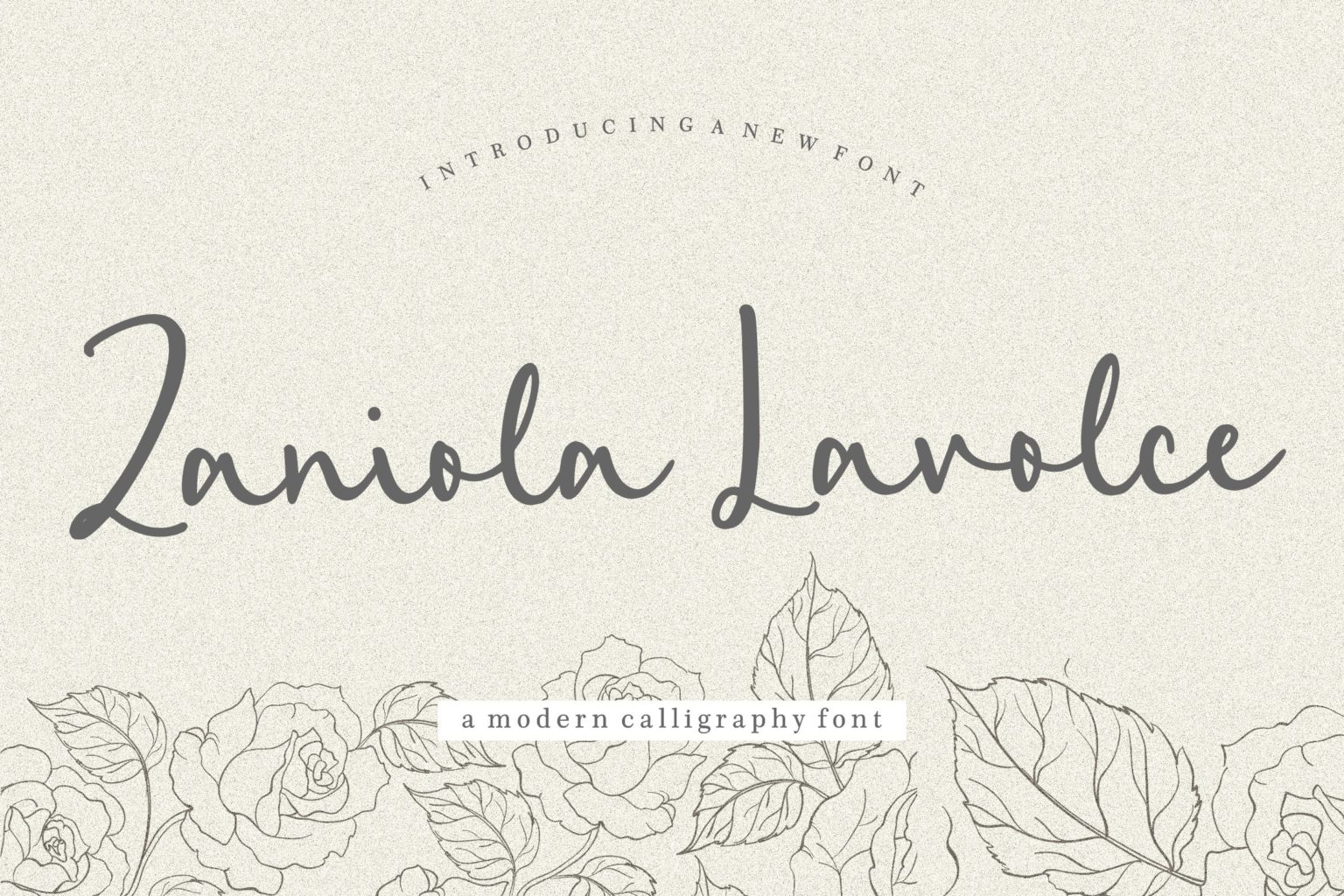 Zaniola Lavolce Modern Callihgraphy Font-1