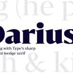 Bw Darius Serif Font Family