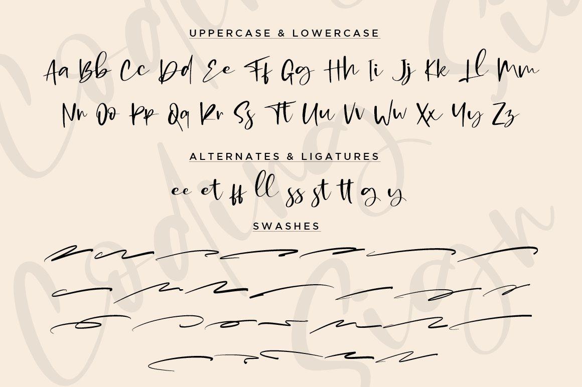 Coding Sign Modern Bounce Script Font-3