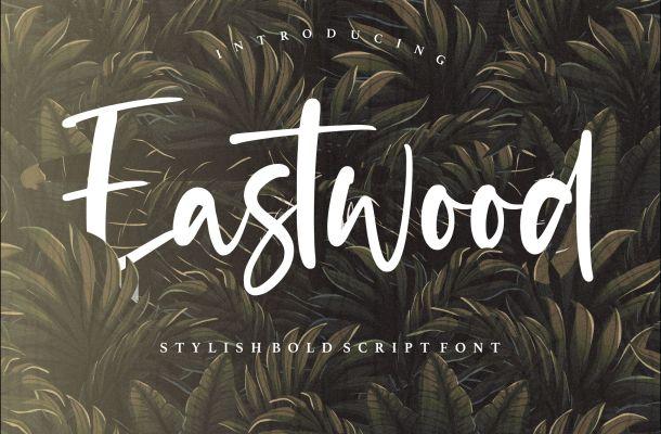 Eastwood Handwritten Script Font