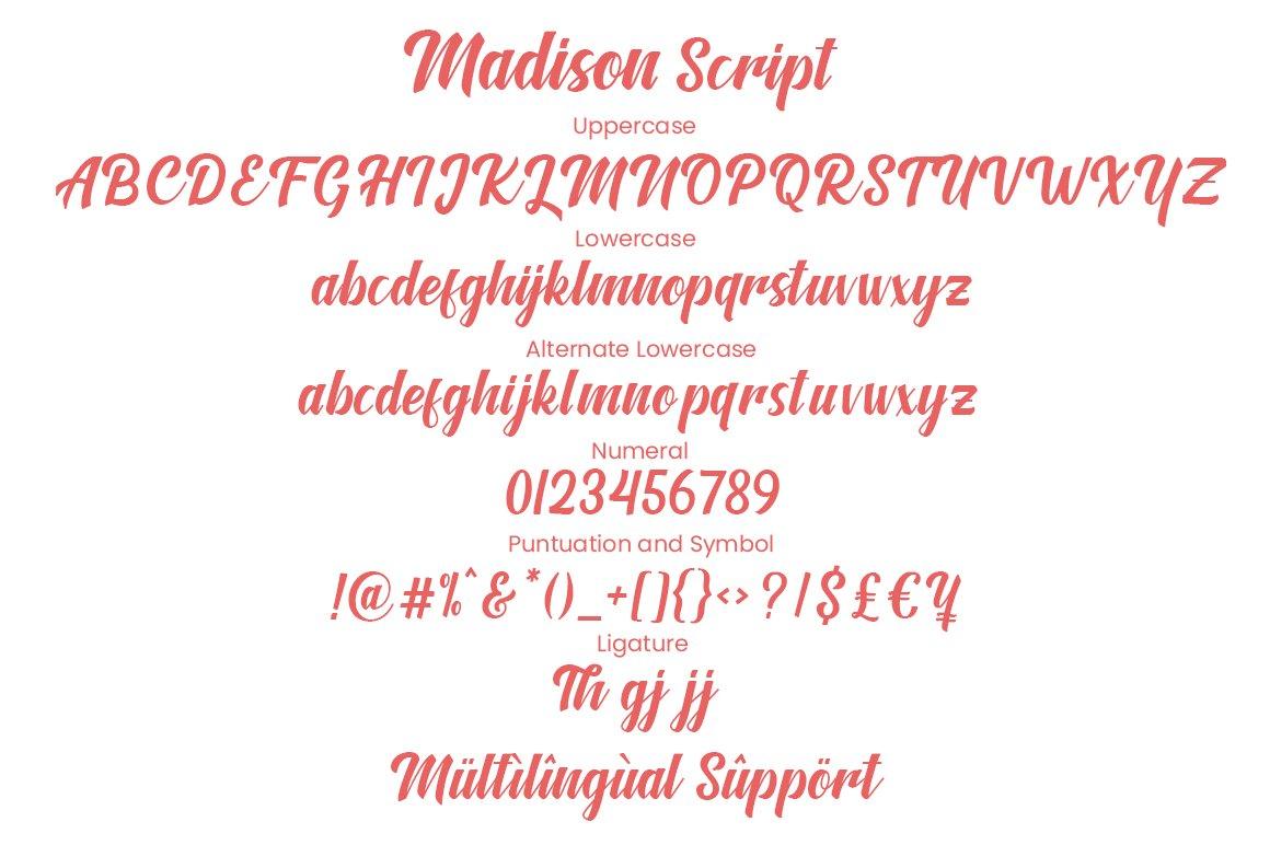 Madison Script Brush Font-3