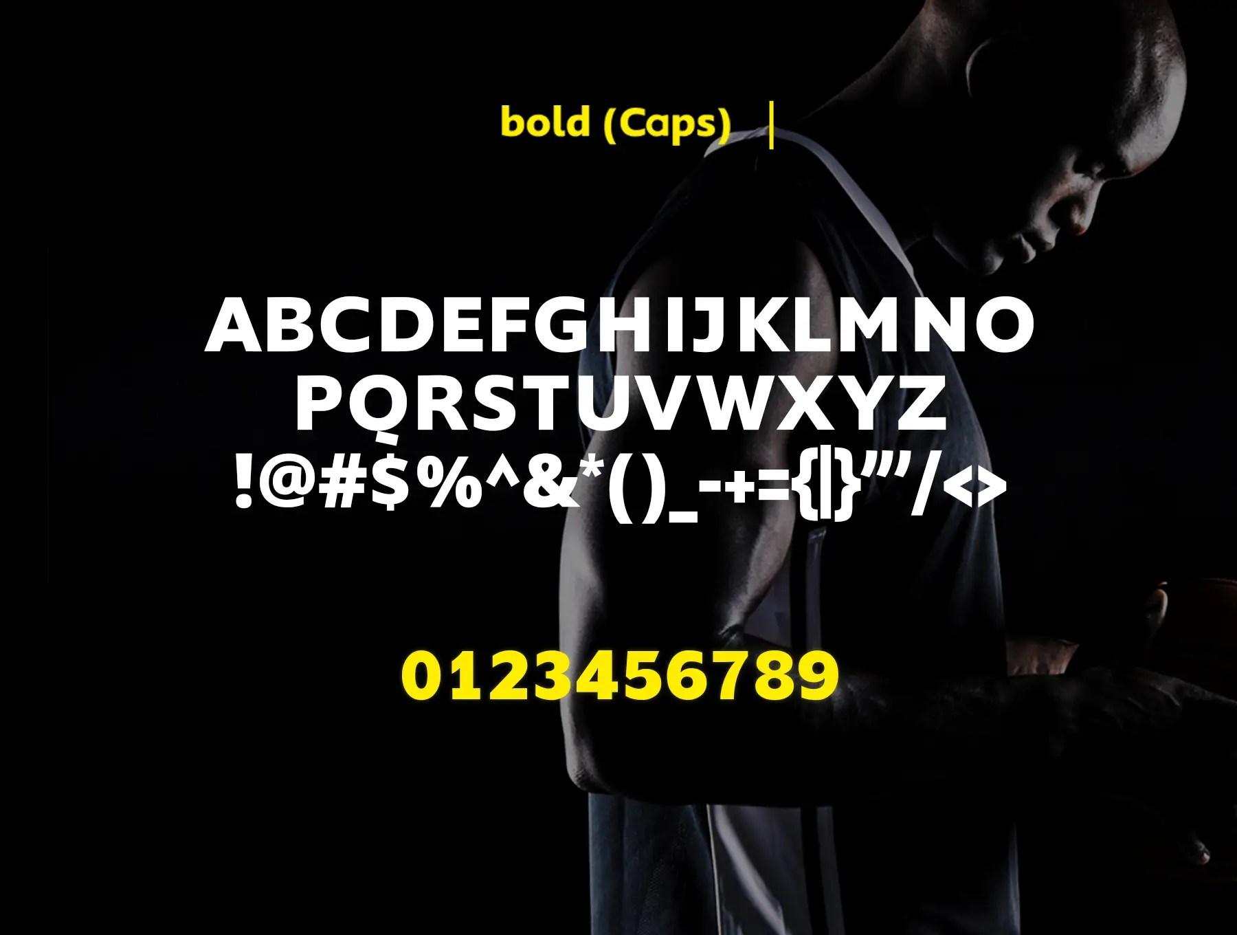Nanotech LLC Sans Serif Typeface-4
