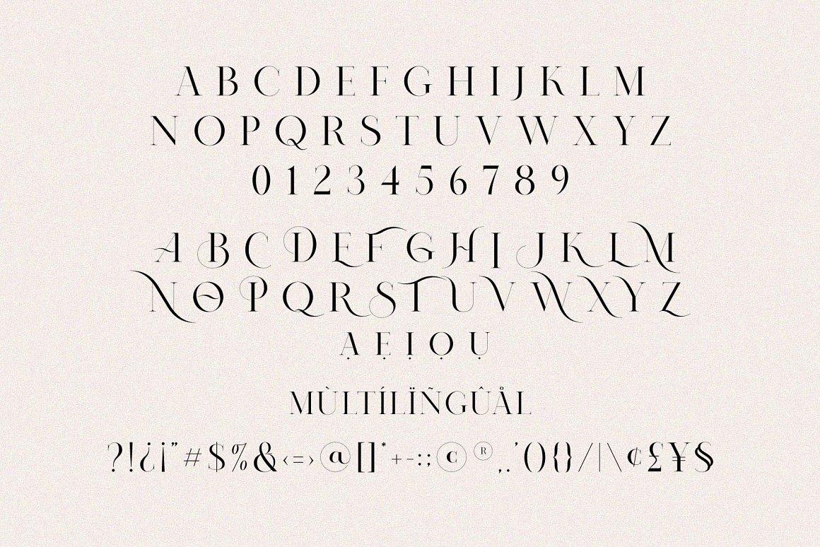 Nomark Ligature Serif Typeface-3