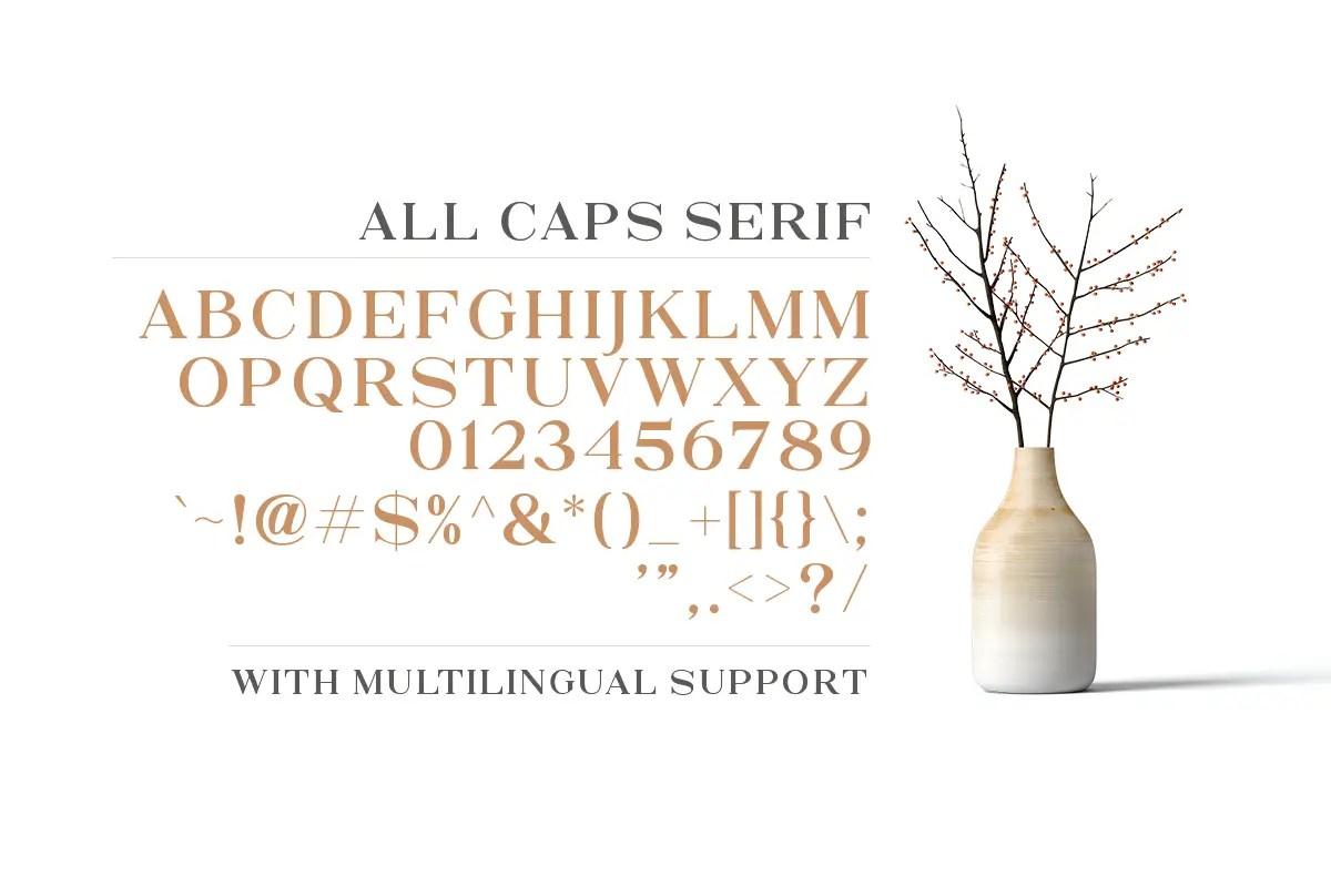 North Avellion Script Serif Duo Font-3