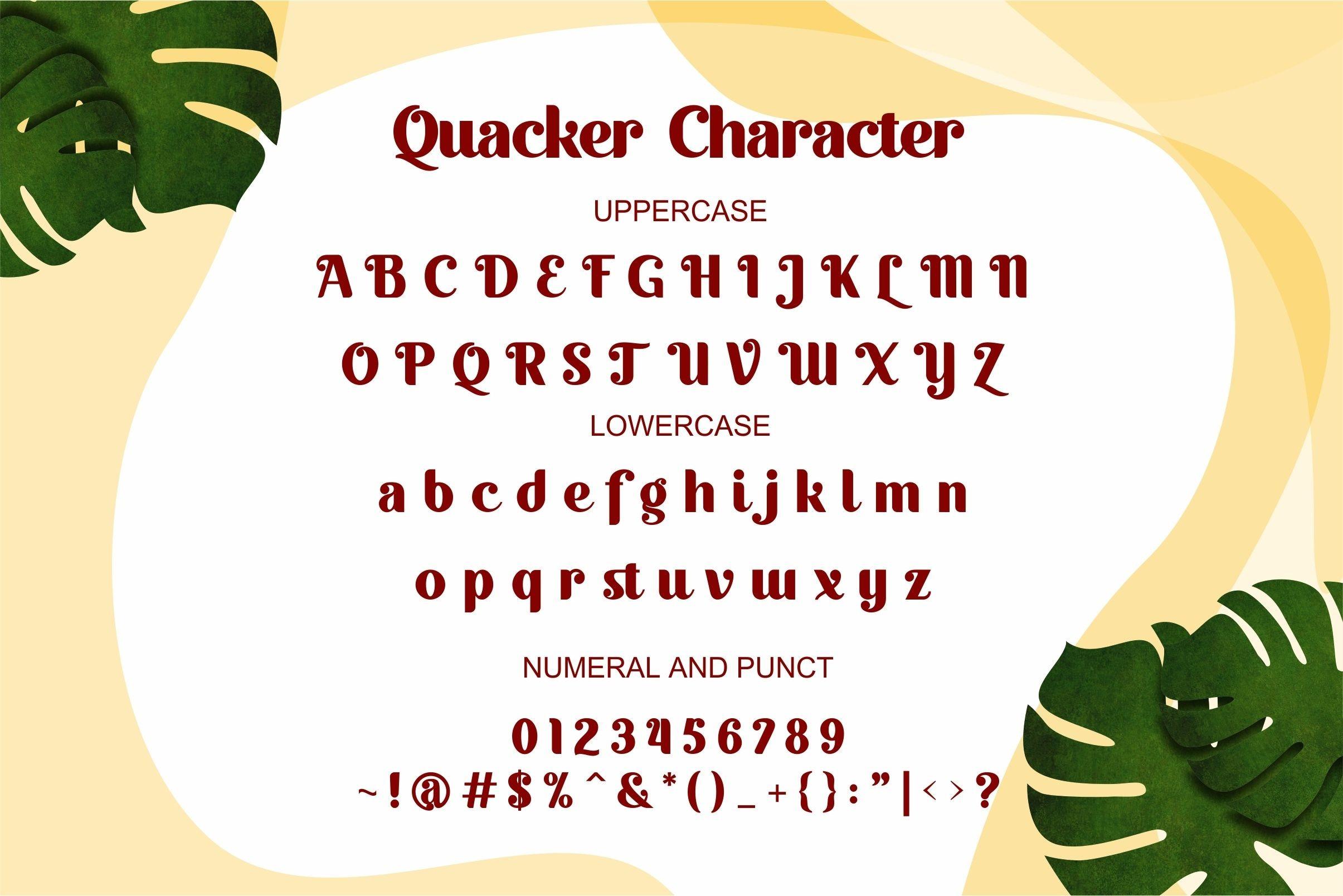 Quacker Sans Serif Font-3