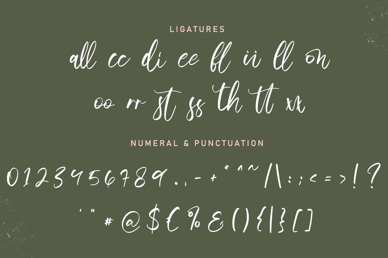 Senopathi Stylish Script Font-4