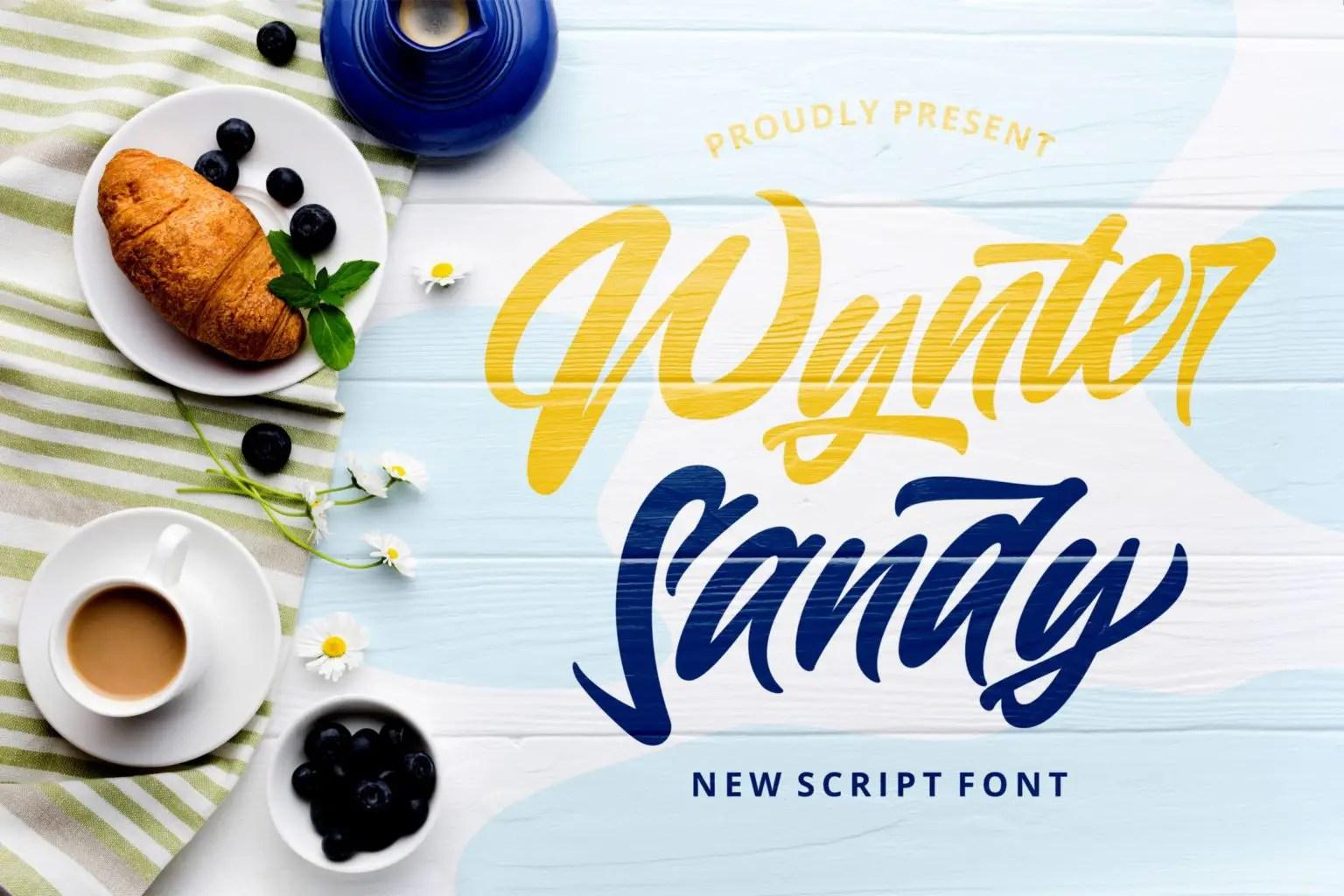 Wynter Sandy Bold Script Font-1