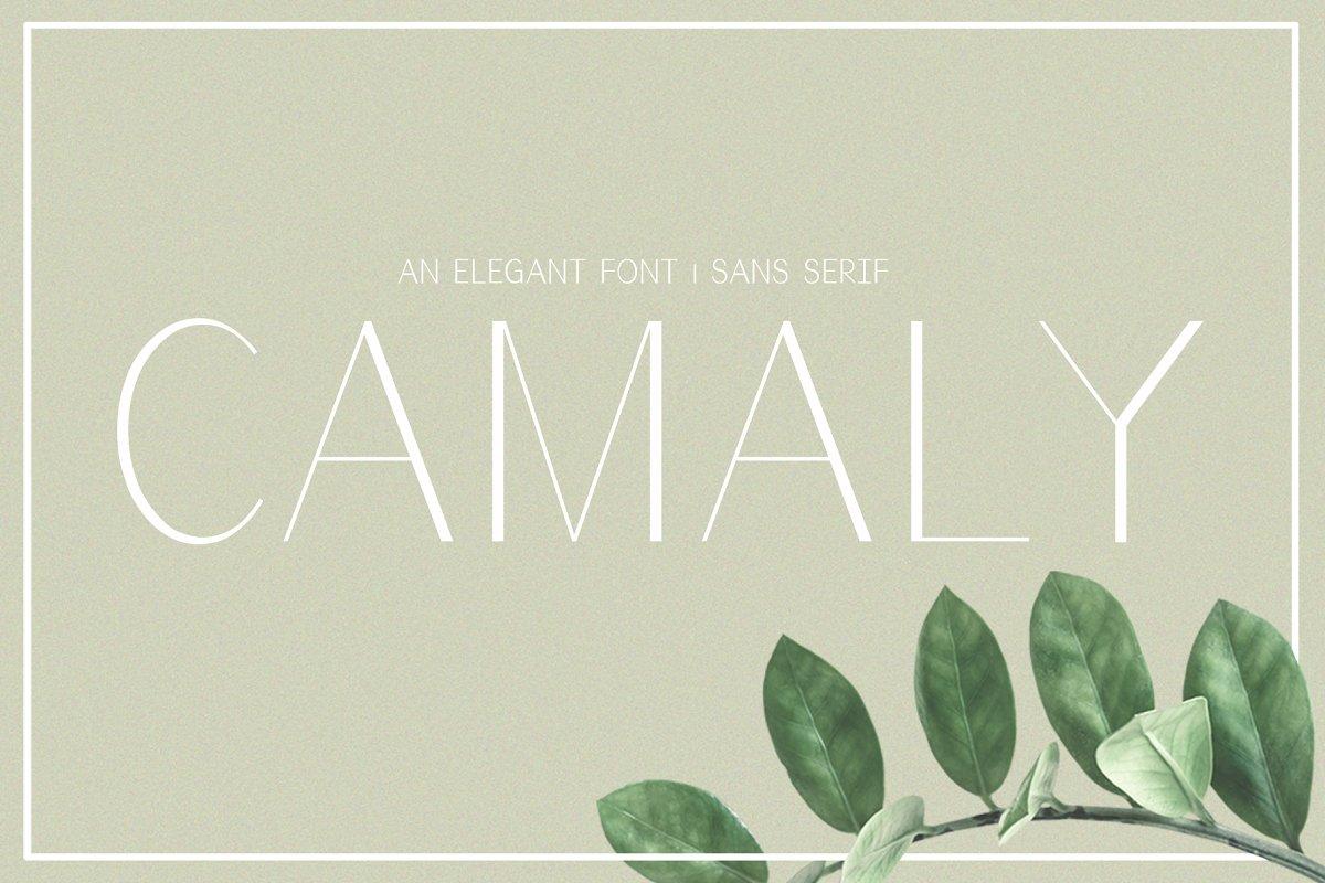 Camaly Sans Serif Font-1