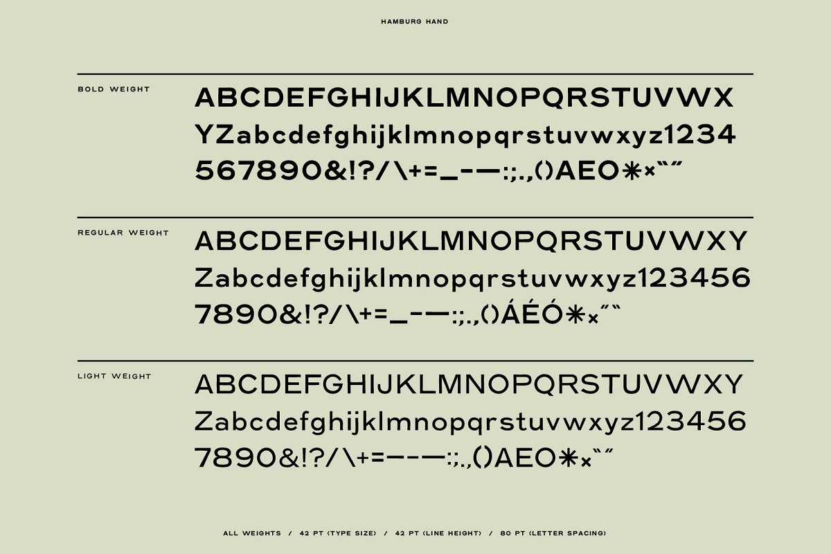 Hamburg Hand Display Font Family-3
