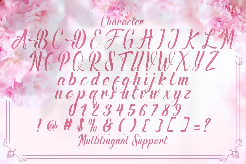 Amadigi Calligraphy Script Typeface-3