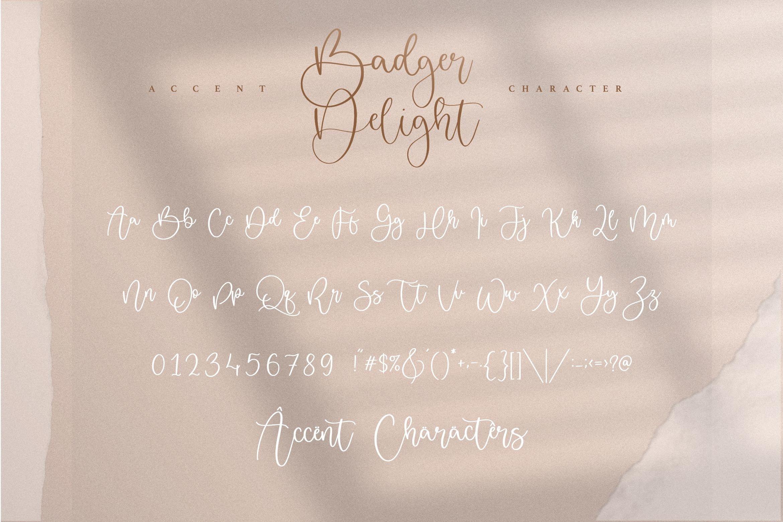 Badger Delight Modern Monoline Script Font-3