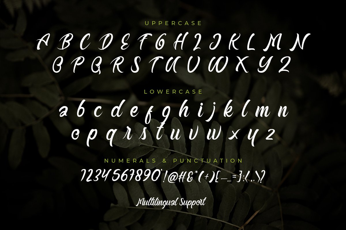 Buttermill Calligraphy Font-3