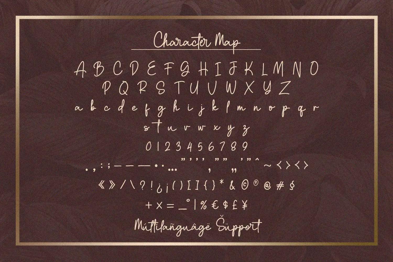 Clatterson Monoline Script Typeface-3