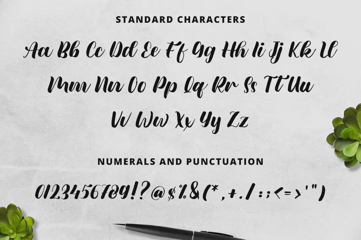 Meylani ScriptCalligraphy Font-3