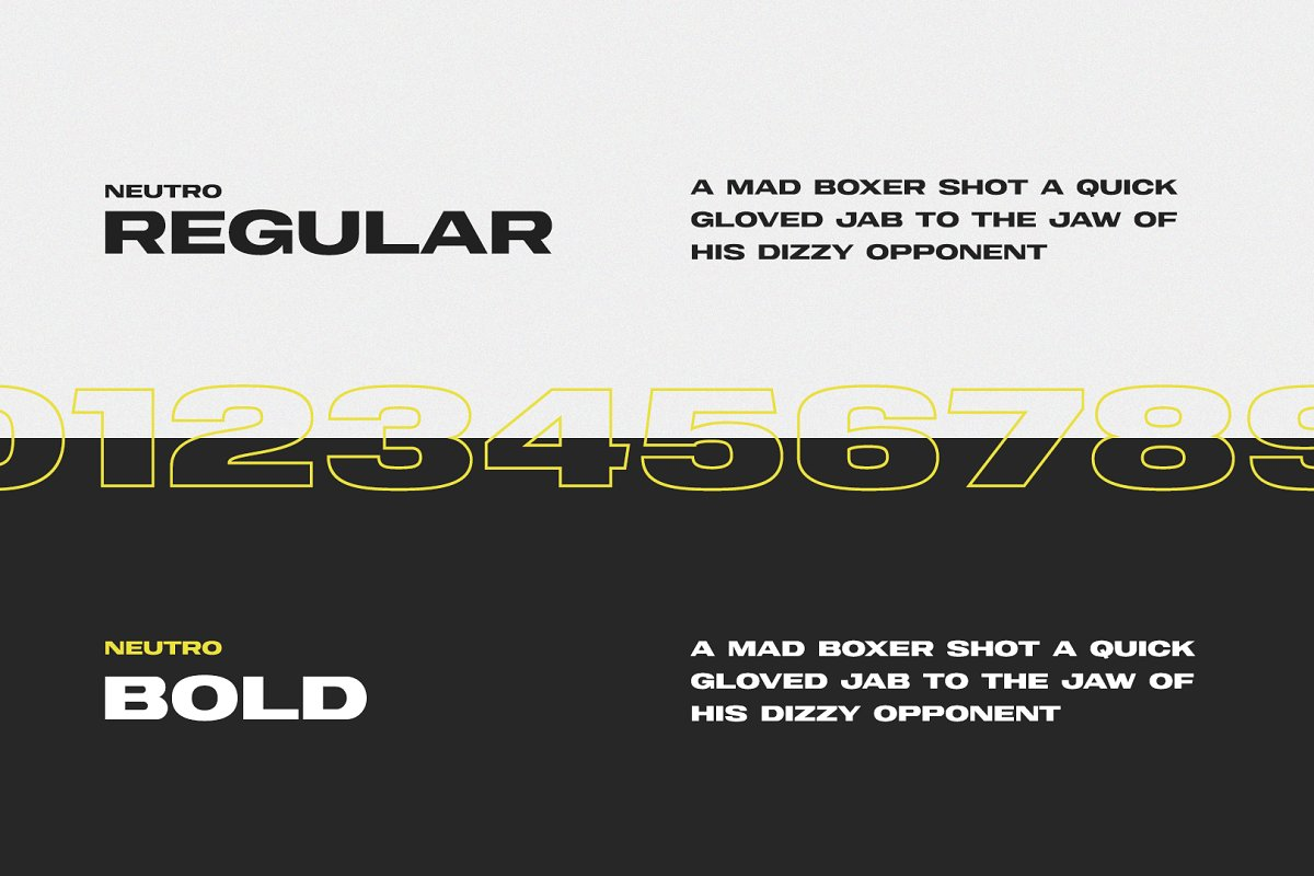 Neutro Bold Sans Display Font-3
