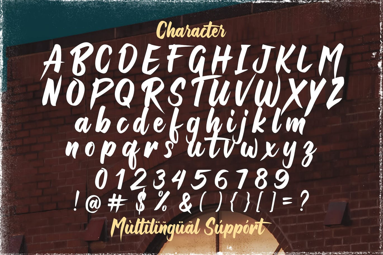 Raizen Anthem Bold Script Typeface-3