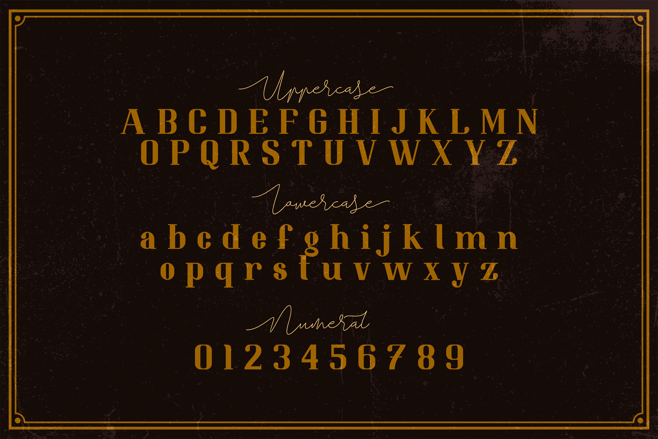 Resolve Modern Elegant Serif Font-3