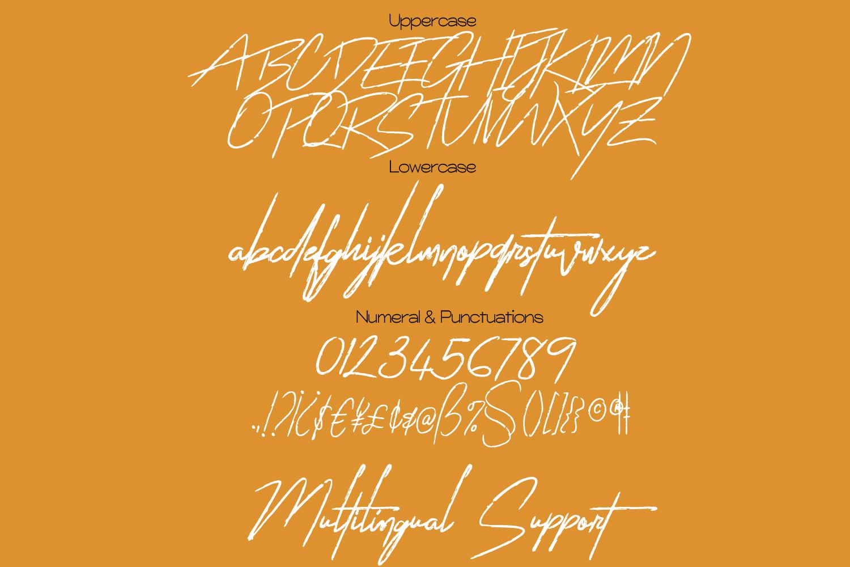 Sattin Modern Script Serif Font Duo-3