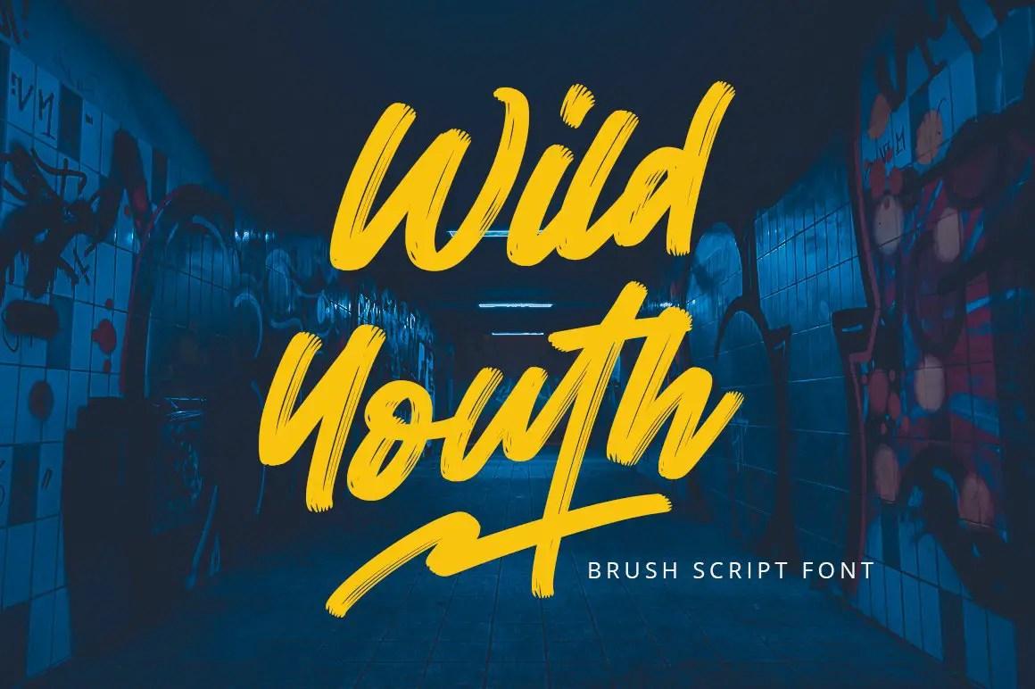 Wild Youth Brush Script Font-1