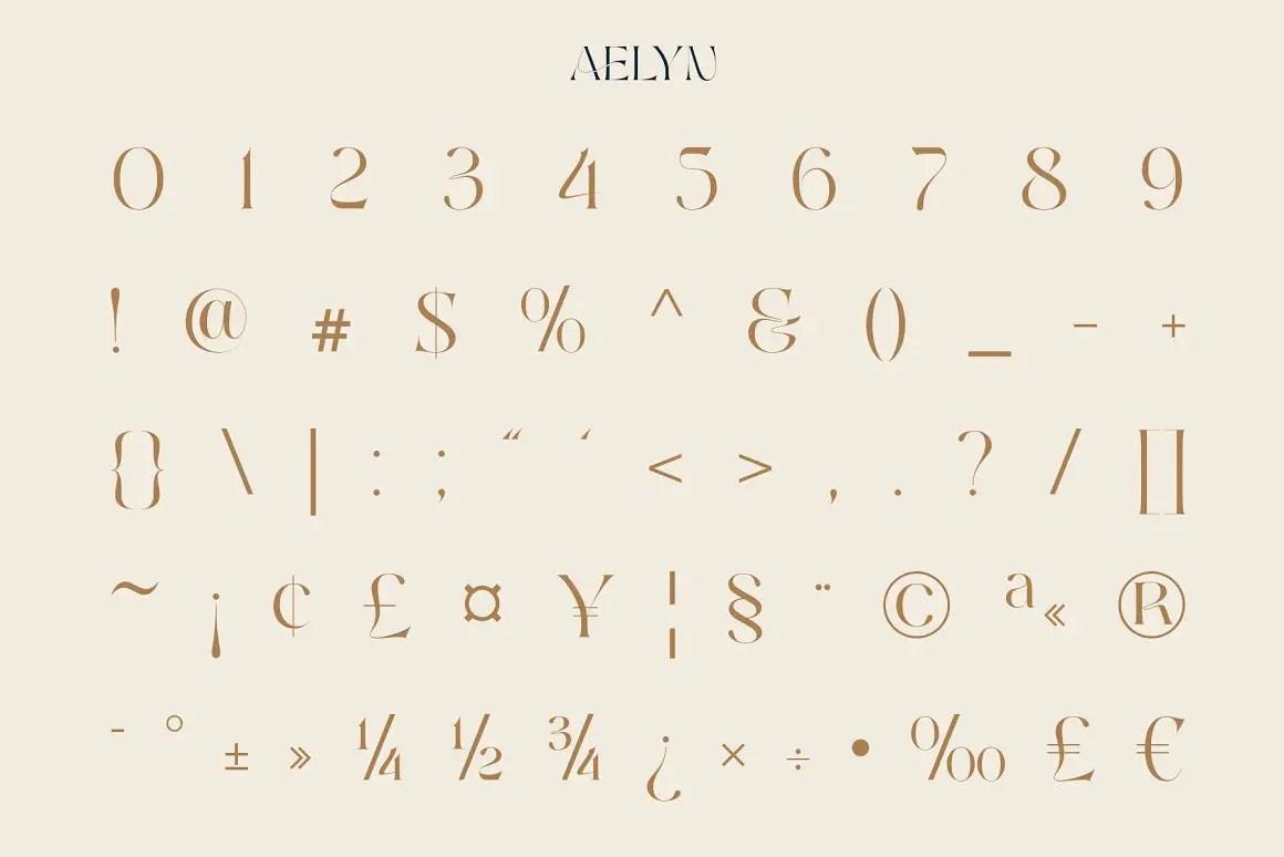 Aelyn Ligature Serif Font-3