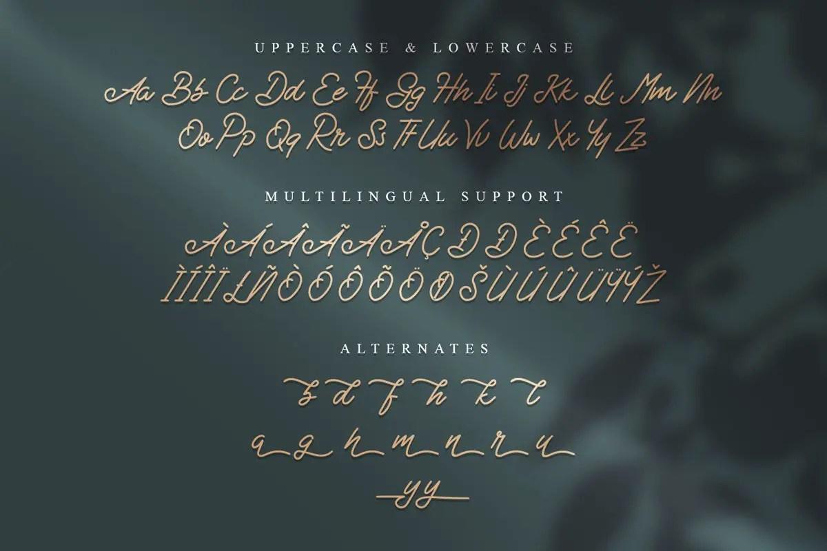 Badbad Monoline Script Font-3
