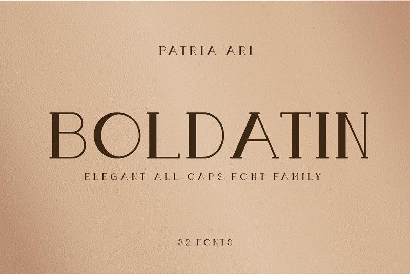Boldatin Slab Serif Font-1