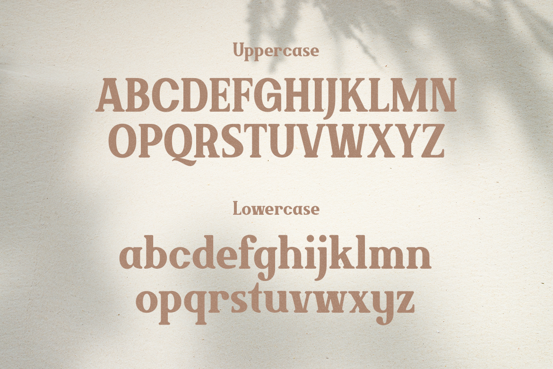 Brickson Serif Font -2