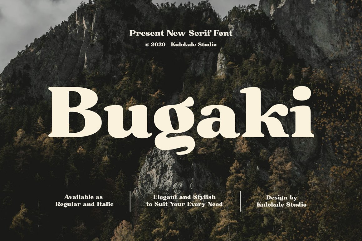 Bugaki - Elegant Serif Font -1