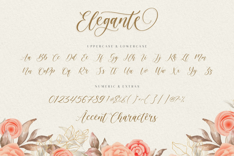 Elegante Modern Elegant Font -3