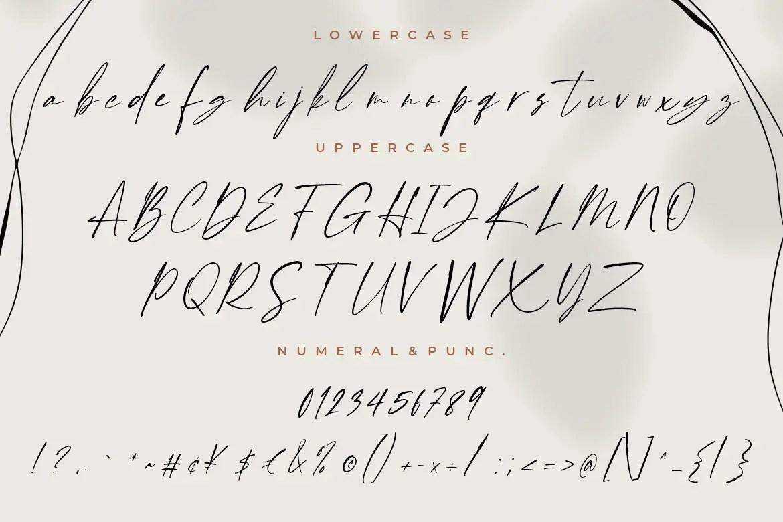 Enternity Script Font -3