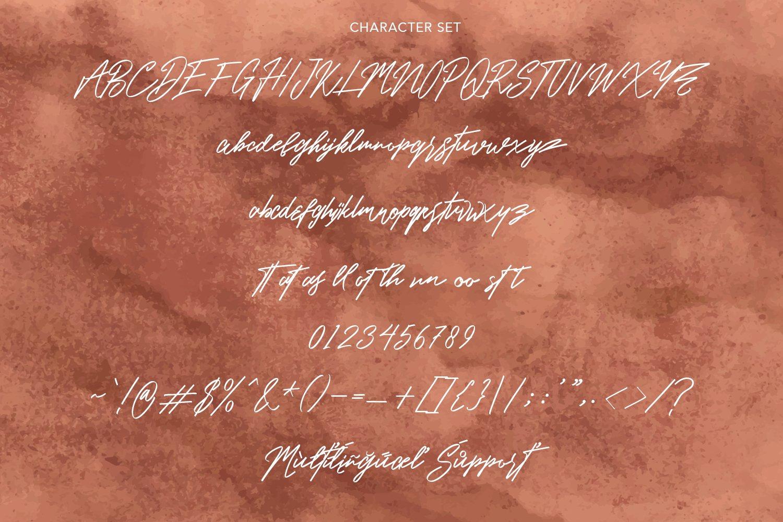 Hasta Lovista Signature Script Font -3