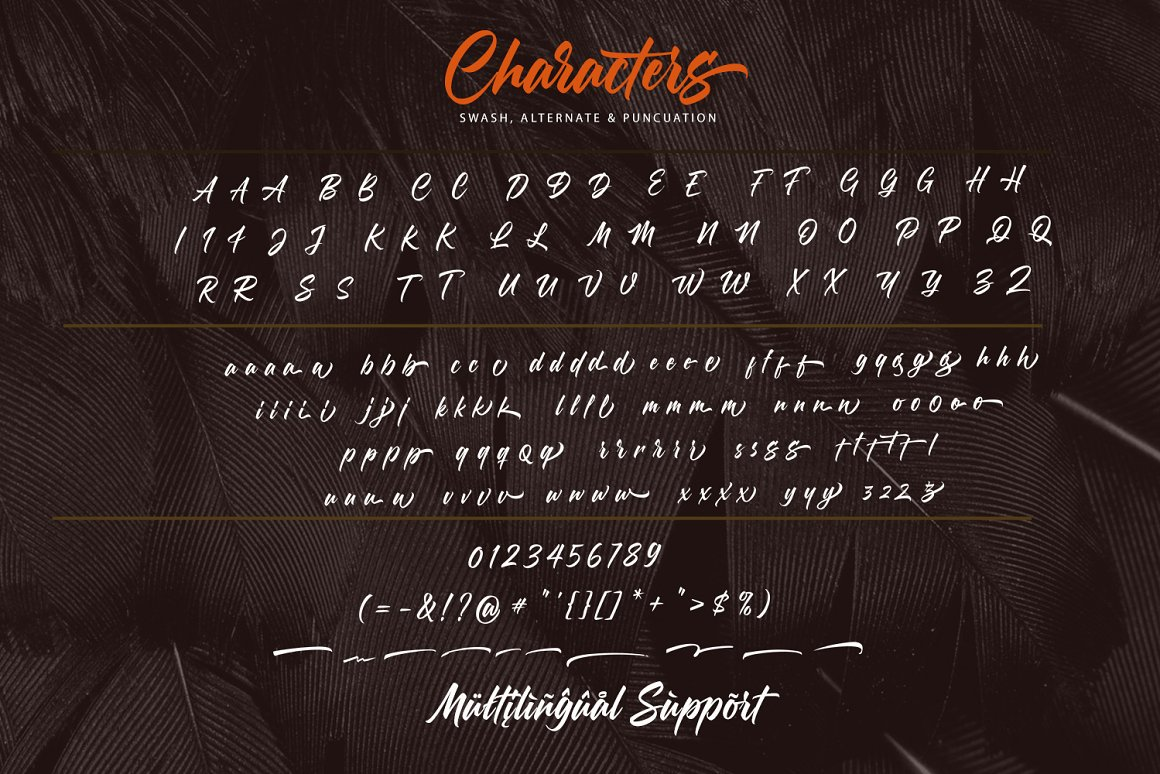 Morning Glory Bold Script Font-3
