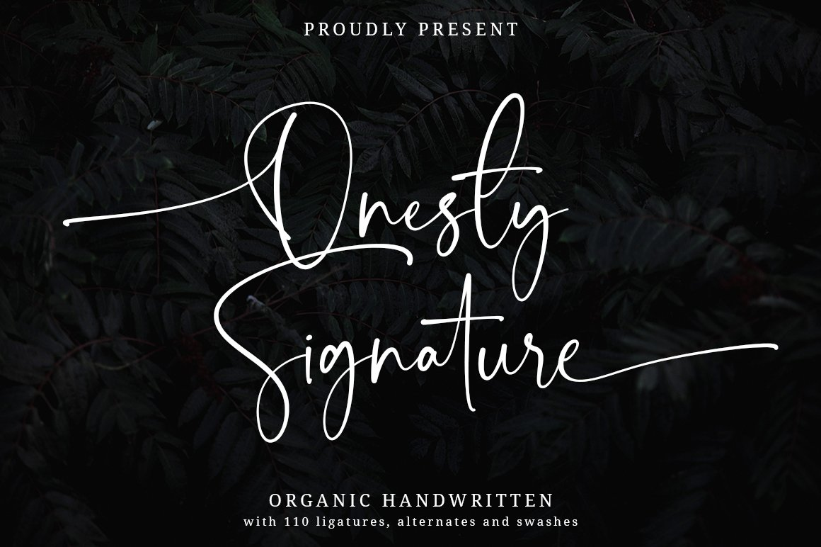 Onesty Signature Organic Handwritten Font -1