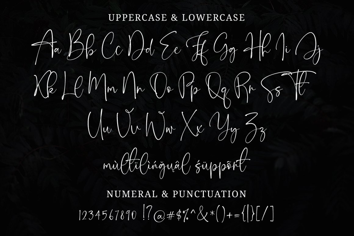 Onesty Signature Organic Handwritten Font -3
