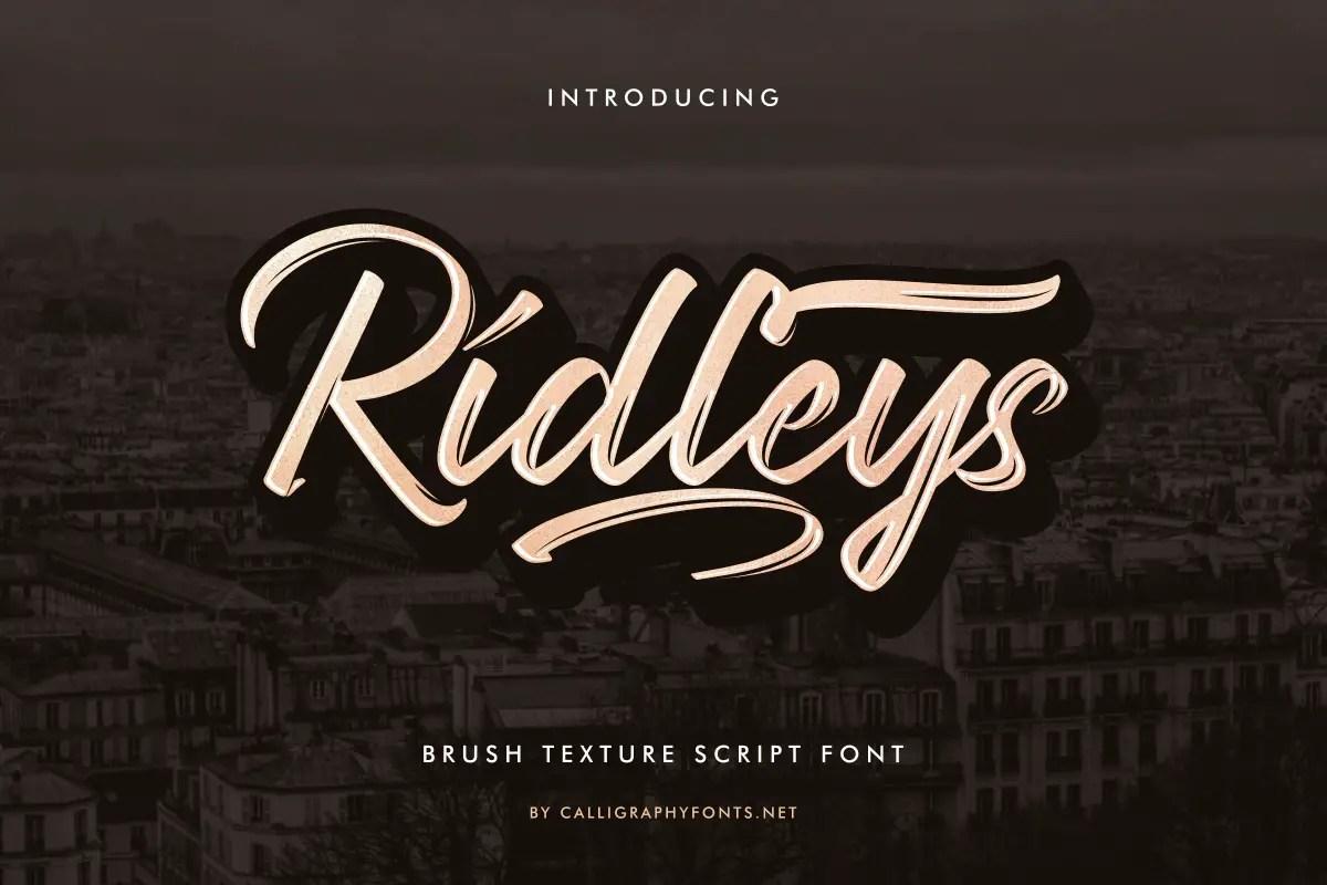 Ridleys brush Font -1