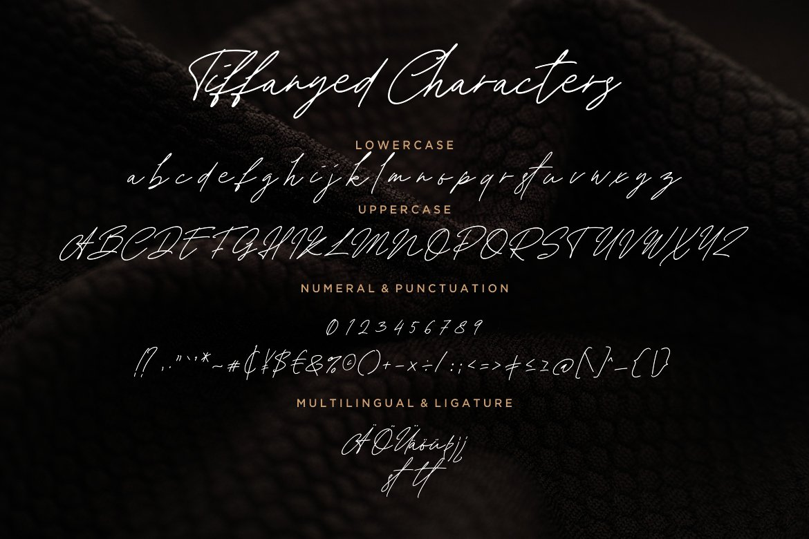 Tiffanyed Signature Collection Font-3