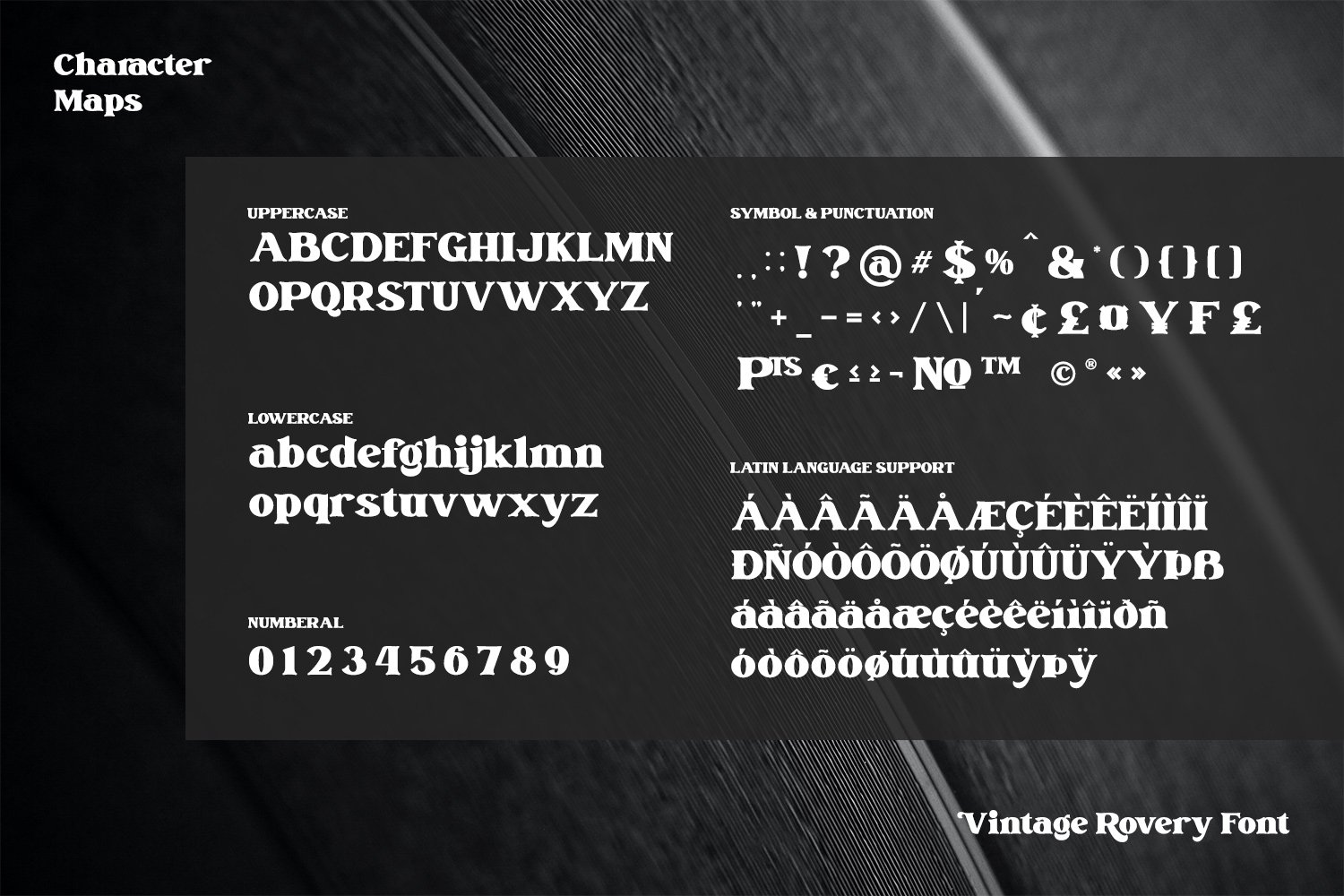 Vintage Rovery Serif Font -3
