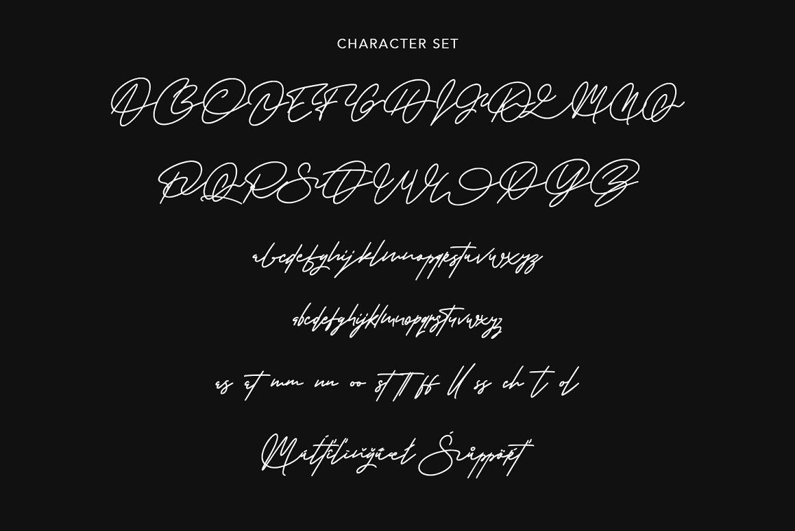 Warwicks Fancy Signature Font -3