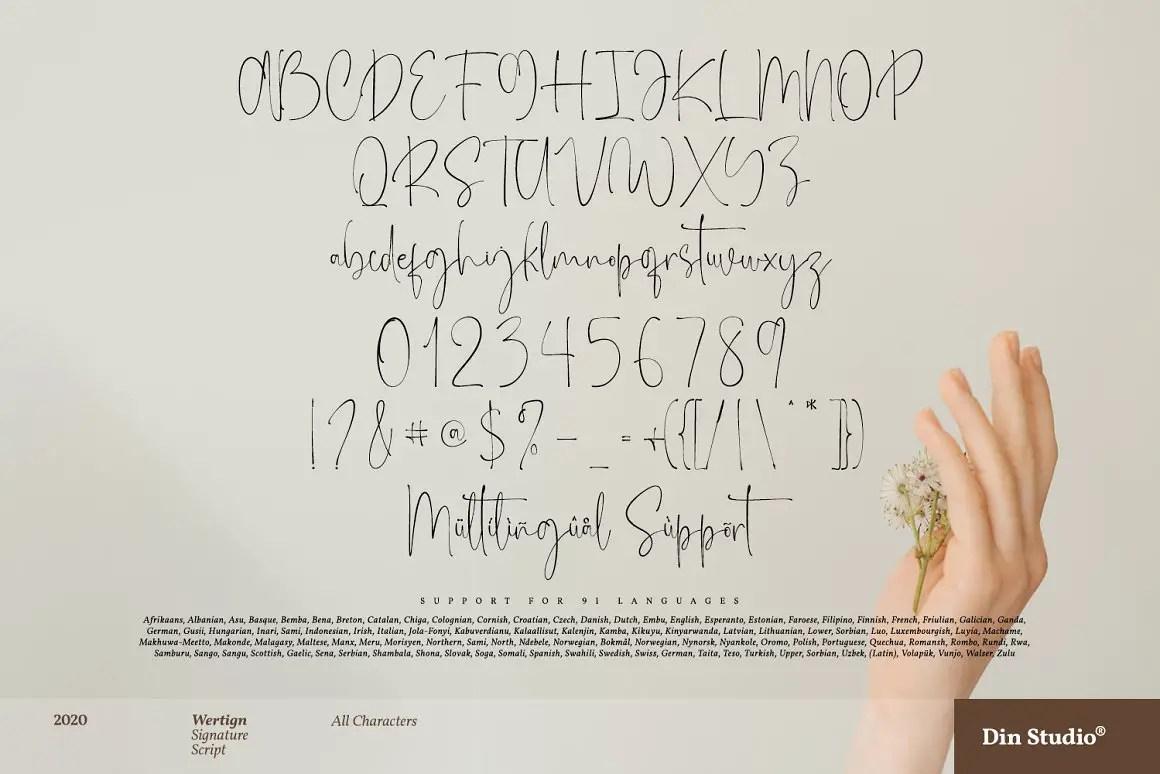 Wertign Signature Calligraphy Font -3