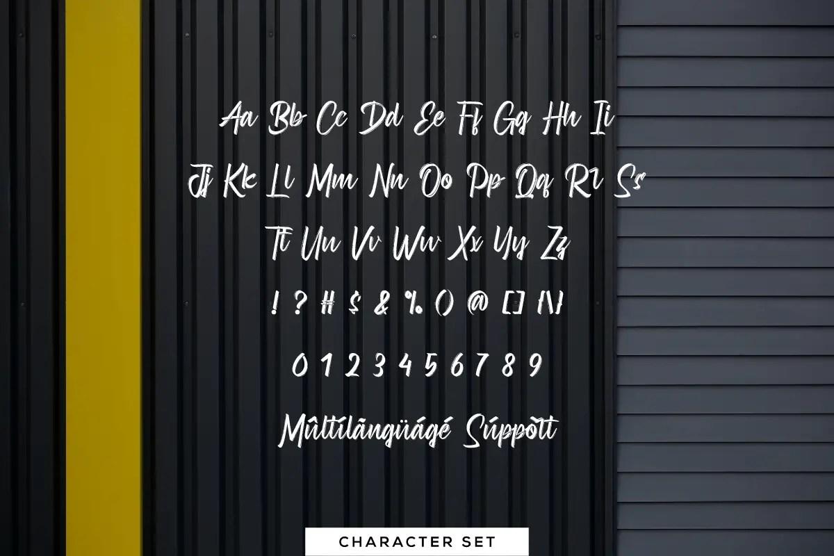 Andrianto Brush Script Font -3
