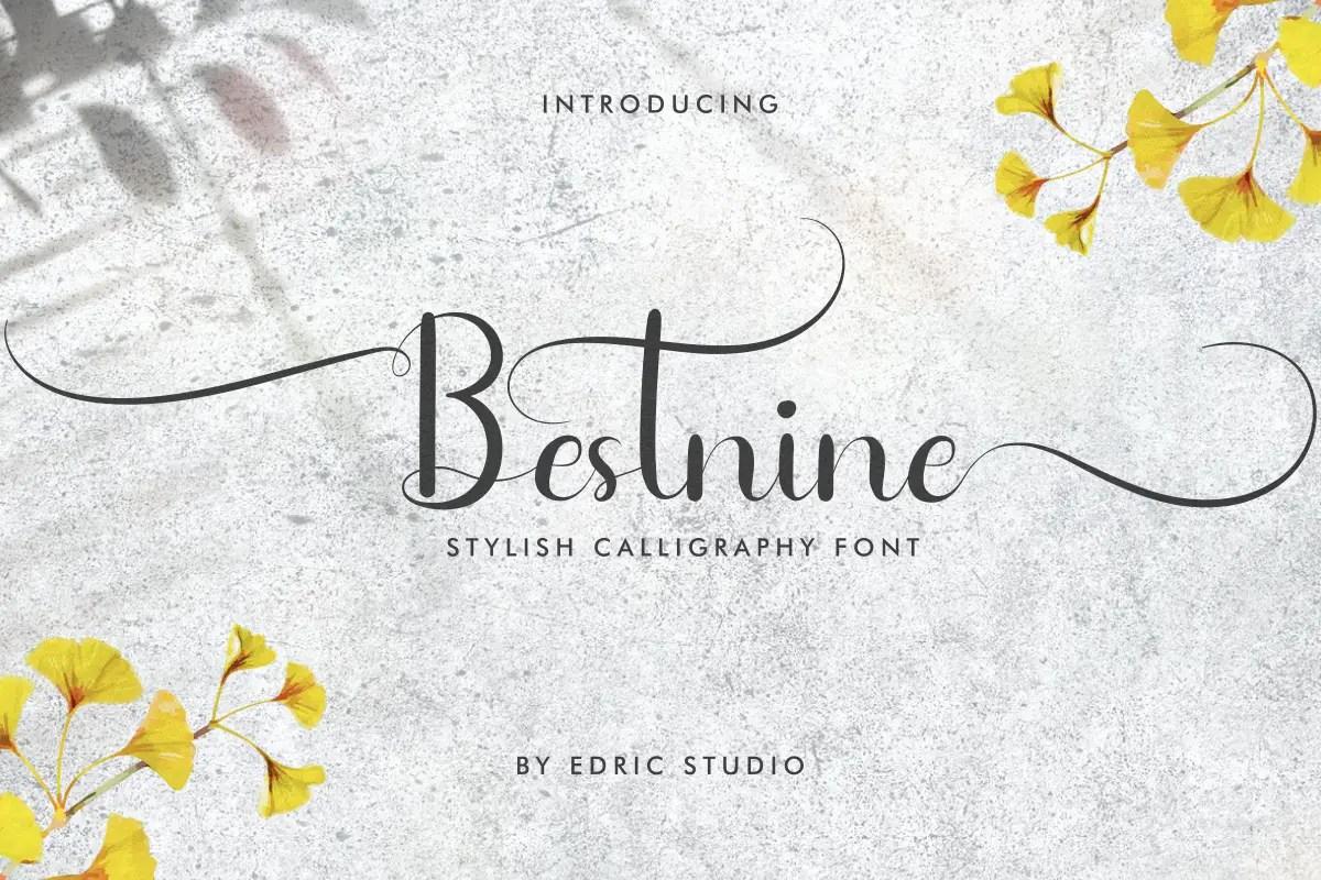 Bestnine Calligraphy Script Font -1