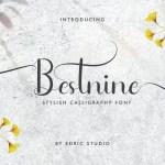 Bestnine Font